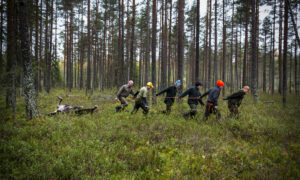 Elandjacht in Zweden